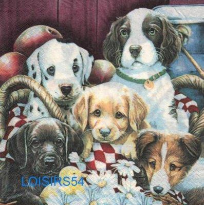 Serviette papier 5 chiens 33 cm x 33 cm