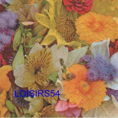 Serviette papier fleurs des champs 33 cm x 33 cm 3 plis