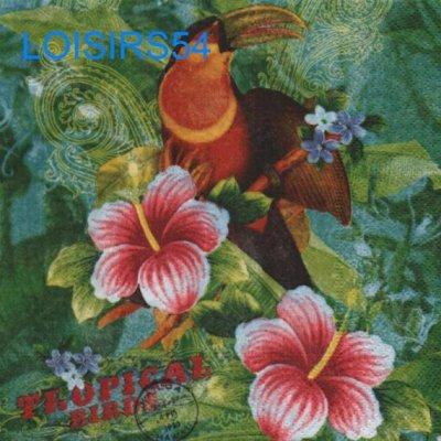 Serviette papier oiseau tropical - 33 cm x 33 cm
