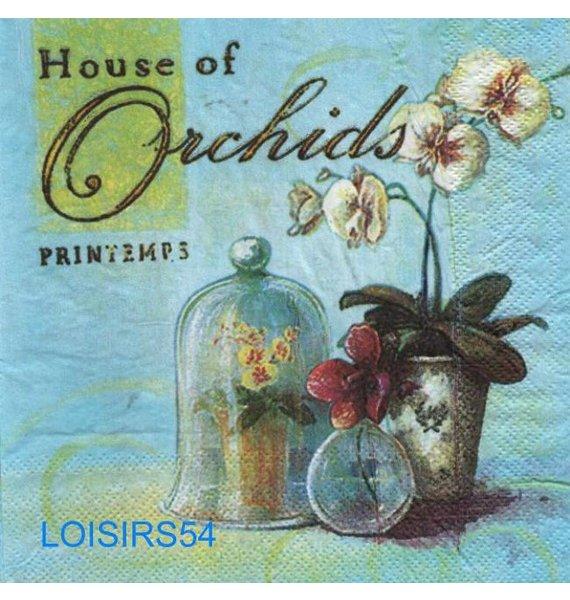 Serviette papier orchidée et Printemps 33 cm x 33 cm 3 plis