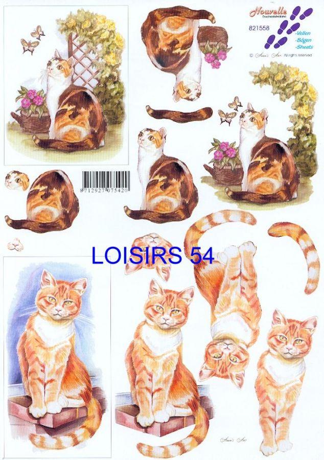 Feuille 3D chat bruns et nature