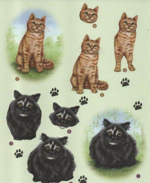 Feuille 3D chat noir et brun pour carte 3D