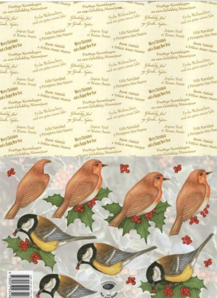 Feuille 3D 2 oiseaux et gui de Noël