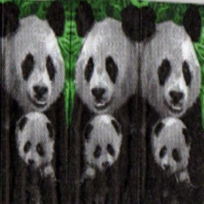 Mouchoir en papier Panda et son petit 20 cm X 20 cm 3 plis