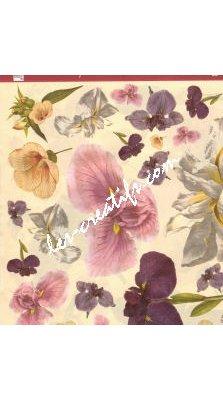 Papier VELO Iris 44x33