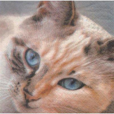 Serviette papier chat brun 33 cm X 33 cm 3 plis