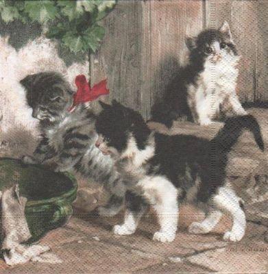 Serviette papier 3 chatons 33cm X 33 cm 3 plis