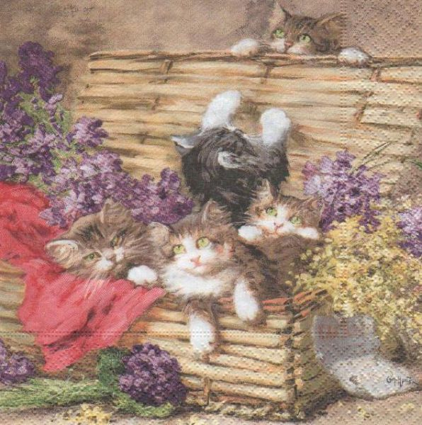 Animaux serviette papier 4 chatons et malle 33cm x 33 cm - Fournitures loisirs creatifs ...