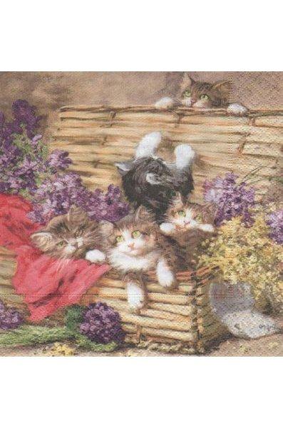 Serviette papier 4 chatons et malle 33cm X 33 cm 3 plis