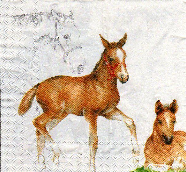 Serviette papier chevaux et poney 33 cm X 33 cm 3 plis