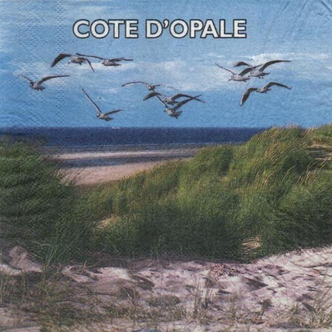 Serviette papier Côte d'Opale 33 cm X 33 cm 3 plis