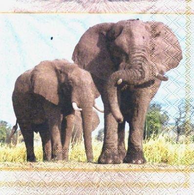 Serviette papier Famille Eléphants 33 cm X 33 cm 3 plis