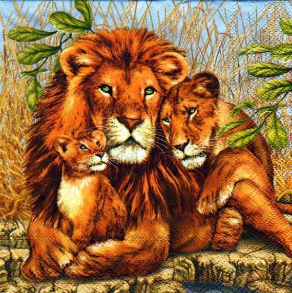 animaux serviette papier famille lions 33cm x 33 cm 3 plis. Black Bedroom Furniture Sets. Home Design Ideas