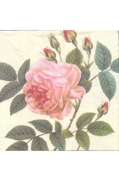Serviette papier motif bouton de rose 33cm X 33 cm 3 plis