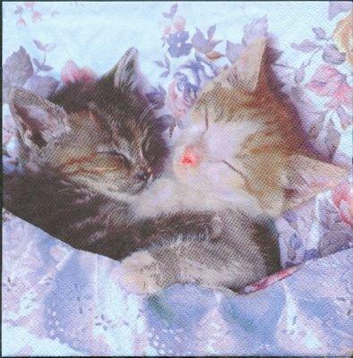 Serviette papier 2 chatons dormeur 33cm X 33 cm 3 plis