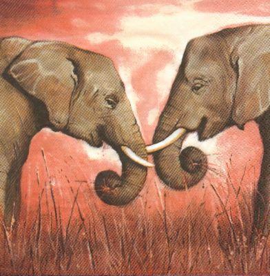 Serviette papier motif 2 éléphants 33 cm X 33 cm 3 plis