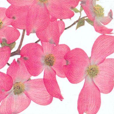 Fleurs Serviette Papier Motif Fleurs Cerisier Japonais