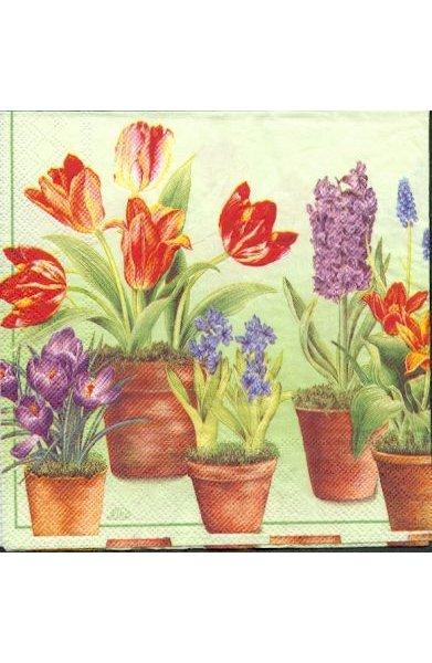 Serviette papier motif jacinthe-tulipe 33 cm X 33 cm 3 plis