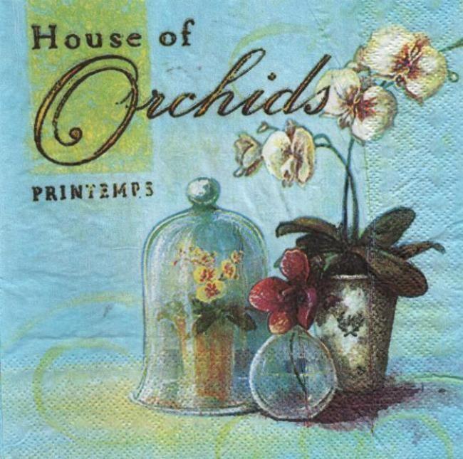 Fleurs serviette papier orchid e et printemps 33 cm x 33 - Fourniture loisirs creatifs ...
