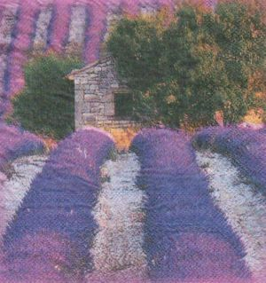 Serviette papier Provence Lubéron 33 cm X 33 cm 2 plis