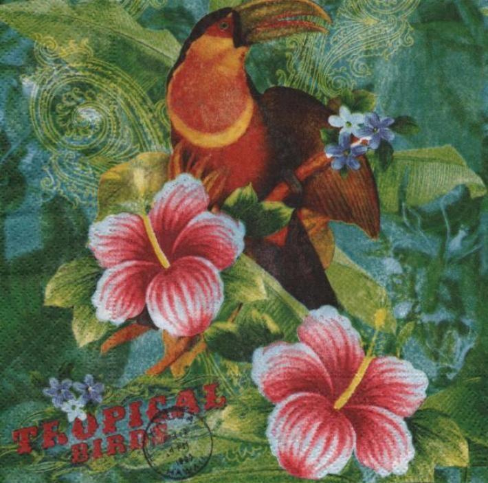Serviette papier Tropical de 33 cm X 33 cm 2 plis