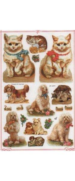 Stickers 3 D chats et chien