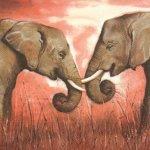 Serviette papier 2 éléphants 33 cm X 33 cm 3 plis