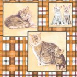Serviette papier chat et son petit 33cm X 33 cm 3 plis