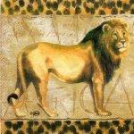 Serviette papier Lion Afrique 33cm X 33 cm 3 plis