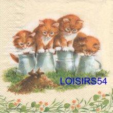 Serviette papier 4 chatons