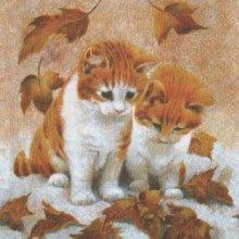 Serviette papier 2 chatons 33cm X 33 cm 3 plis