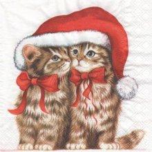 Serviette papier 2 chats et bonnet 33cm X 33 cm 3 plis