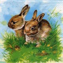 Serviette papier 2 lapins dans l'herbe 33cm X 33 cm 3 plis