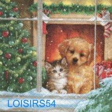 Serviette papier chien et chat  - 25 cm x 25 cm