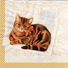 Serviette papier chat et petit flot 33cm X 33 cm 3 plis