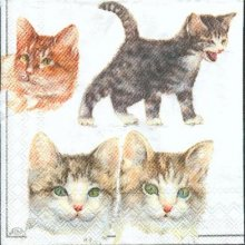 Serviette papier chats joueurs 25 cm X 25 cm 3 plis