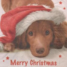 Serviette papier chien et Noël 33 cm X 33 cm 3 plis