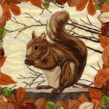 Serviette papier ecureuil 33cm X 33 cm 3 plis