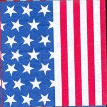 Serviette Etats Unis et drapeau 33 cm X 33 cm 3 plis