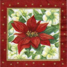 Serviette papier fleurs rouge vivace de 33 cm X 33 cm 3 plis