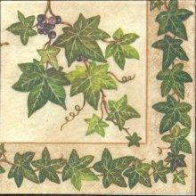 Serviette papier motif lierre 33 cm X 33 cm 3 plis