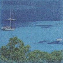 Serviette papier mer du Sud et bateau 33 cm X 33 cm 2 plis