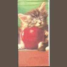 Mouchoir papier  motif chat 21,5 cm X 21,5 cm 4 plis