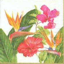 Serviette papier fleurs oiseau paradis 25 cm X 25 cm 3 plis