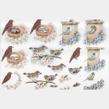 Oiseau et fleurs feuille 3D