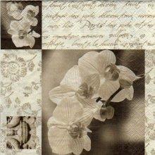 Serviette papier orchidée 33cm X 33 cm 3 plis