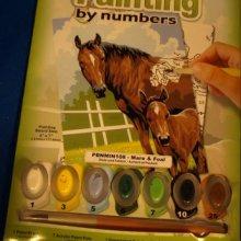 Peinture au numéro cheval