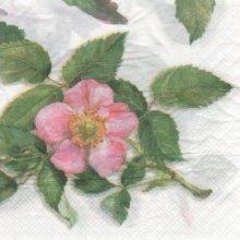 Serviette papier rose canina 33 cm X 33 cm 2 plis