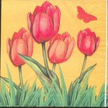 Serviette tulipes orange 33 cm X 33 cm 3 plis